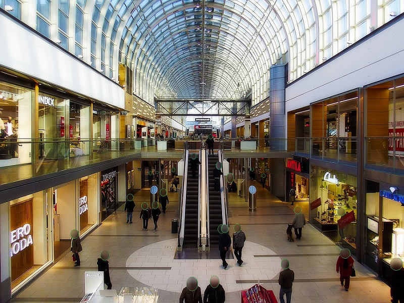 Shopping Mall Surveillance and Redaction