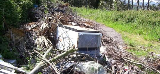Investigations | Illegal Dumping Cases