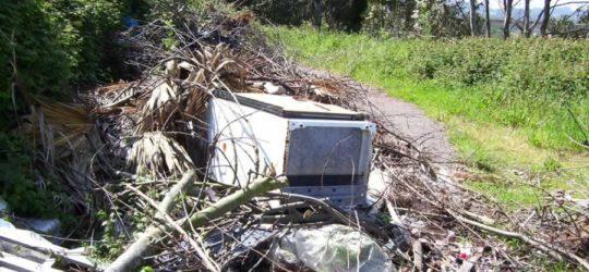 Investigations | Illegal Dumping Cases